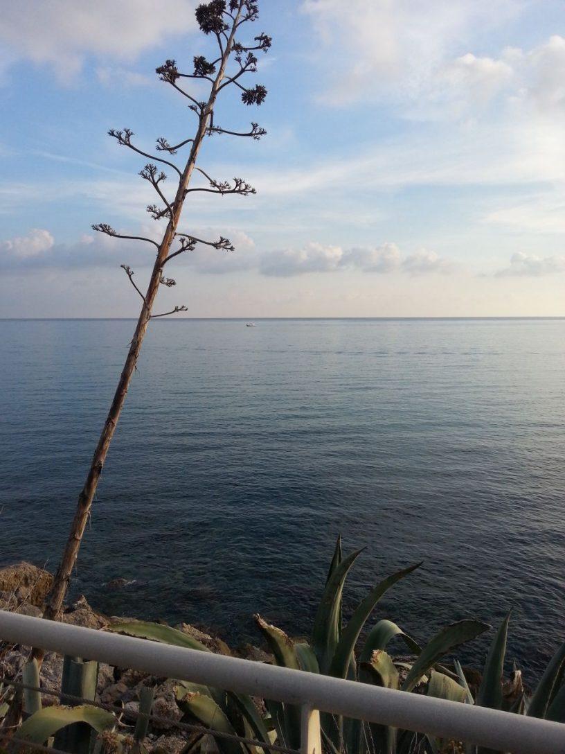 San Lorenzo al mare (IM - Liguria) di Daniella Macrì
