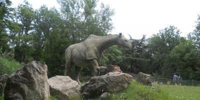 Parco Natura viva di Bussolengo