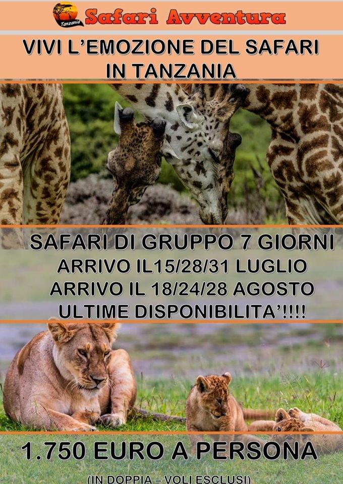 Safari Avventura Tour Operator in Tanzania