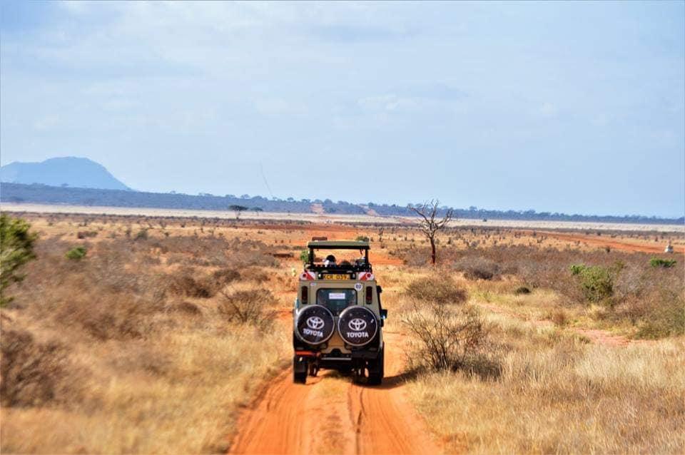 Safari Kenya con Uovo