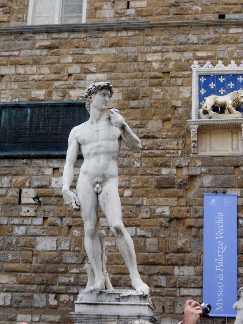 Il David di Michelangelo - Firenze di Daniella Macrì