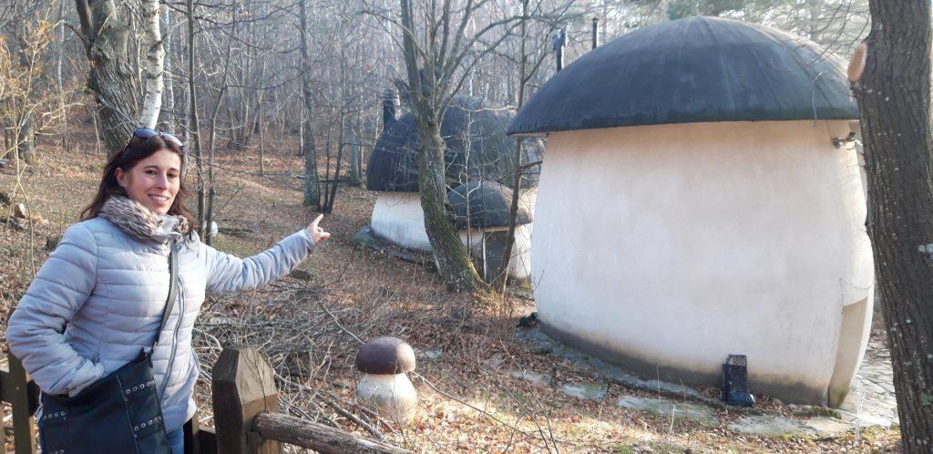 Le casette a forma di fungo