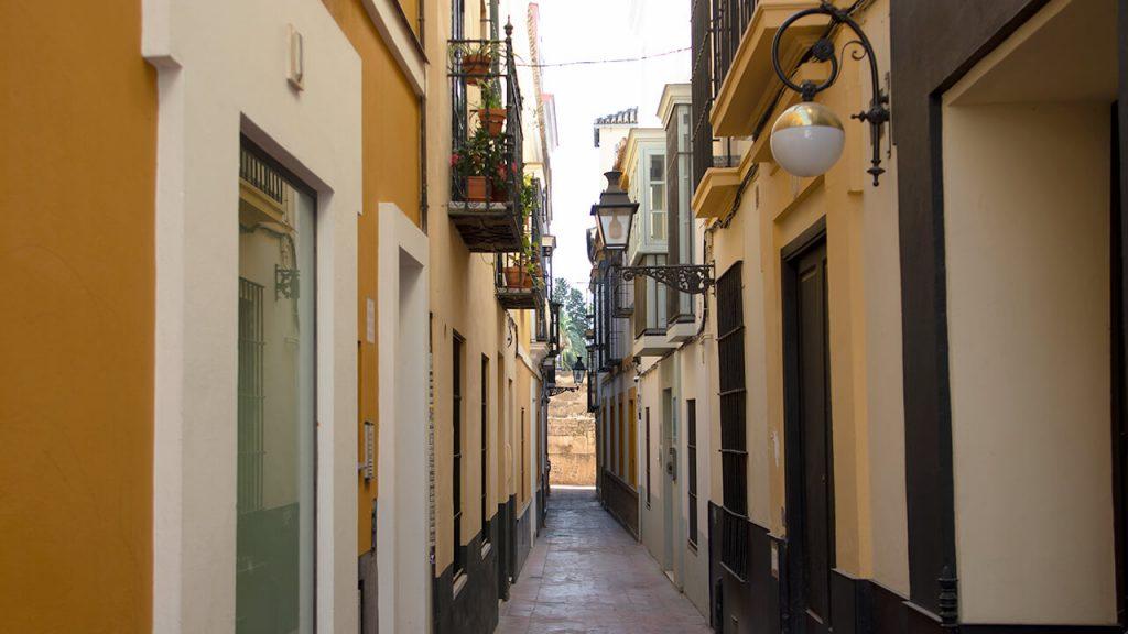 Vicoli Santa Cruz